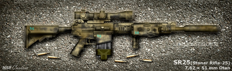 -=special ops weapon=- Sr25_n10