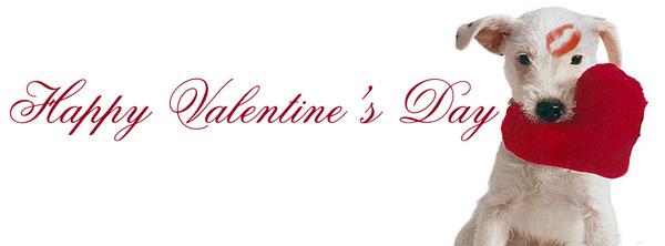 Valentine ngọt ngào Valent42