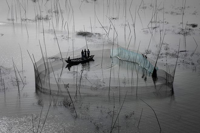 Nhiếp ảnh gia Yann Arthus-Bertrand Yannar29