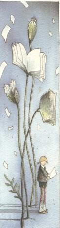bibliothèque de Jodoigne 002_1217