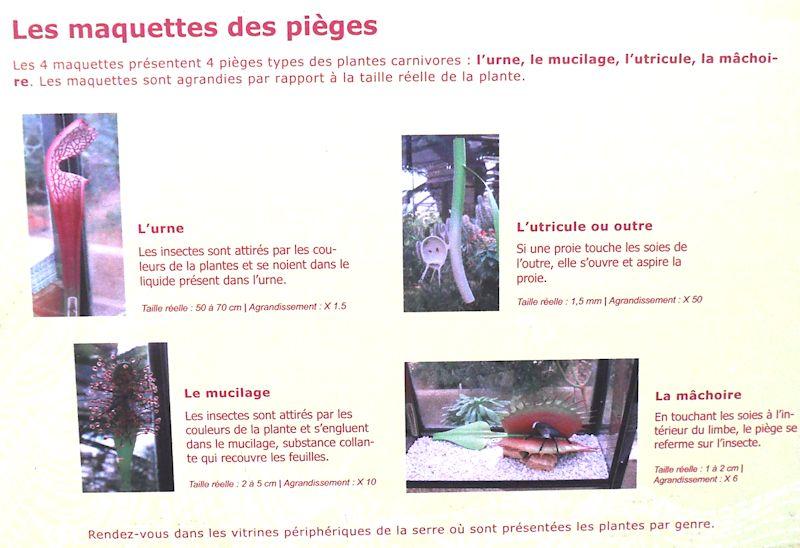 parc de la tete d'or Les_ma10