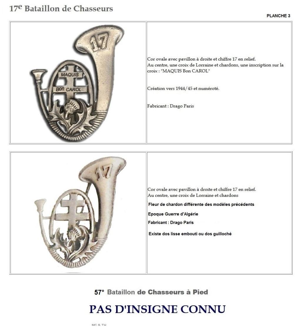 Les insignes de bataillons- Mise à jour... - Page 2 17e_pl12