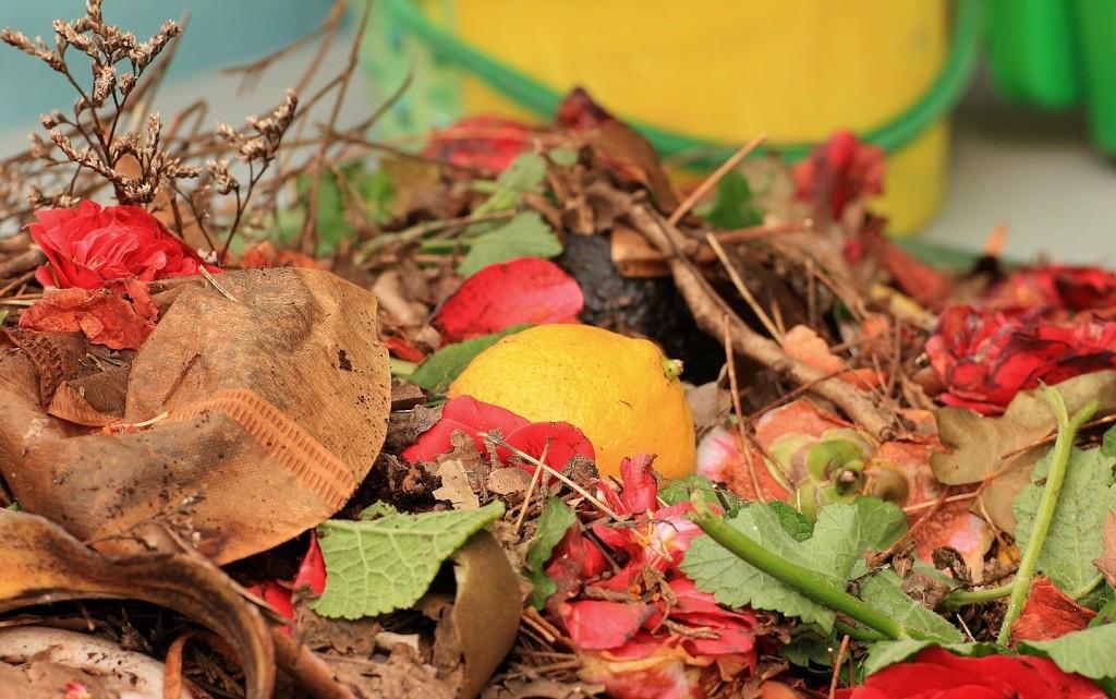 Création écologique  Compos10