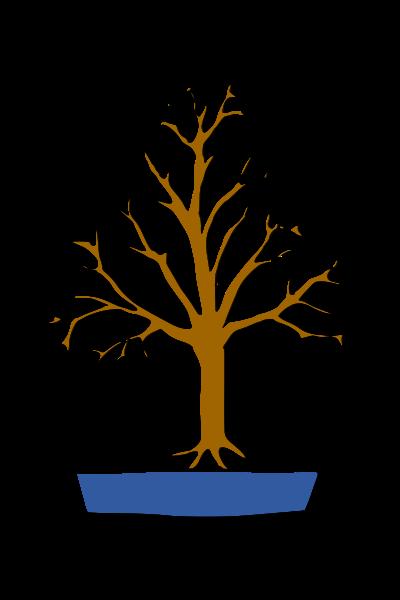 les formes du bonsai  Balai10