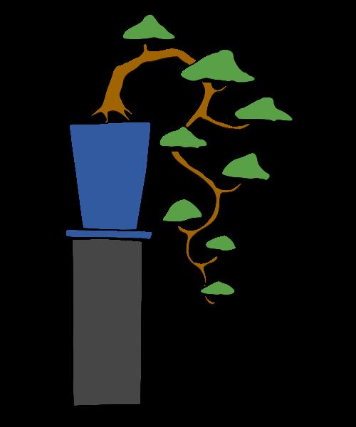 les formes du bonsai  Cascad10