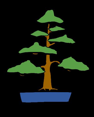 les formes du bonsai  Droit_10