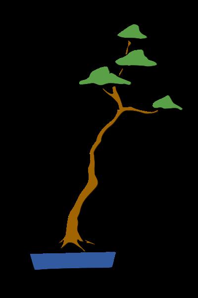 les formes du bonsai  Lettra10