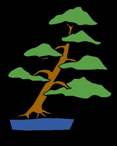 les formes du bonsai  Pencha10