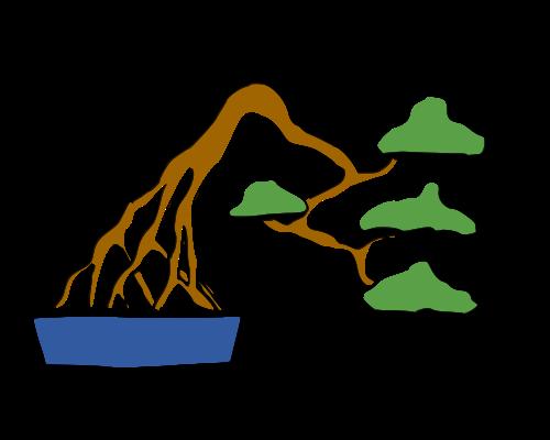 les formes du bonsai  Racine10