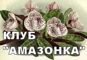 ДВ клуб любителей растений АМАЗОНКА