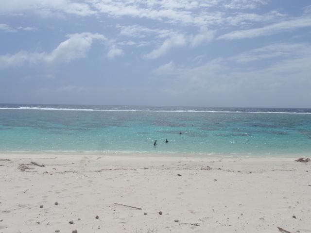 OUVEA l'ile la plus proche du paradis P9150010