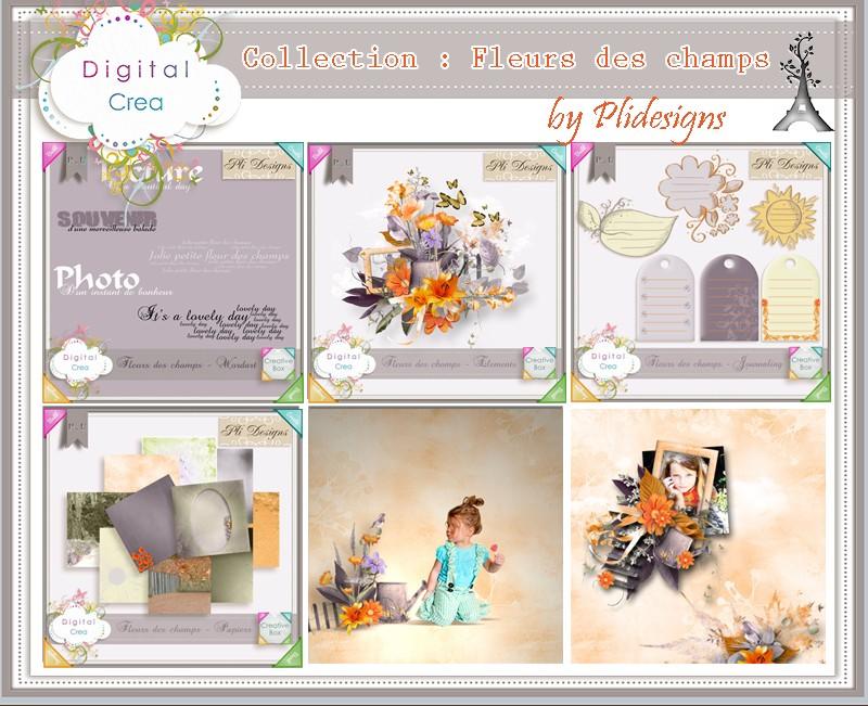 Nouveautés du 23/09/2013 @ Digital Crea *MAJ* - Page 3 Plides32