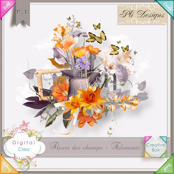 Les news chez Pliscrap - MAJ 23/6 the most beautiful day - Page 3 Plides34