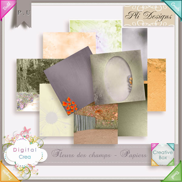 Les news chez Pliscrap - MAJ 23/6 the most beautiful day - Page 3 Plides35
