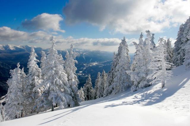 Il était une fois l'hiver...- Alaska10