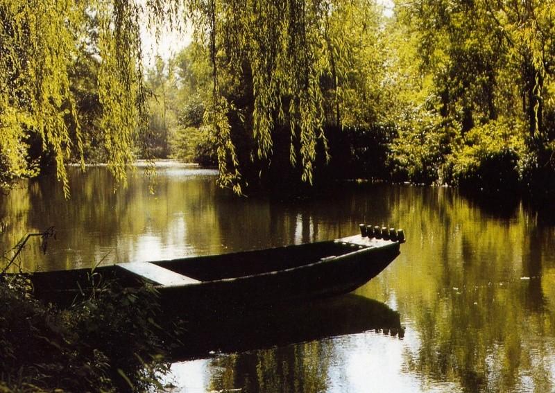 Présentez- nous des belles photos de votre région Marais11