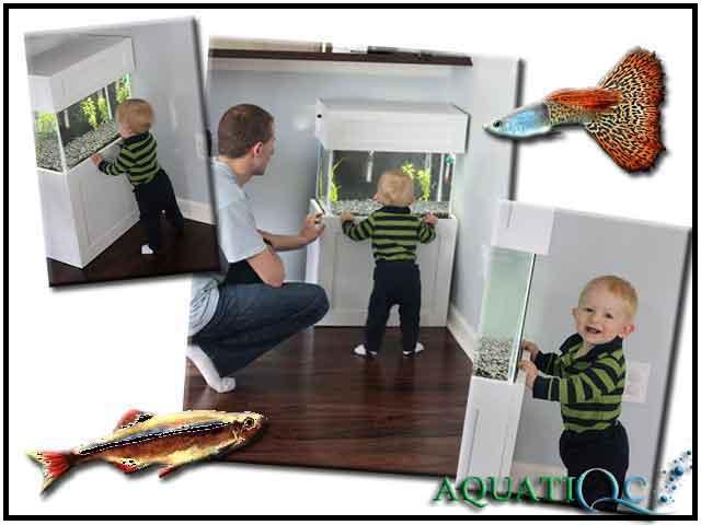 Idée bricolage pour vos enfants , futurs aquariophiles ! Echell11