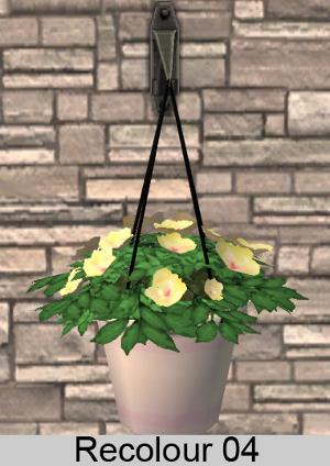 Цветы для дома - Страница 7 Image794