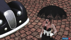 Зонты Image_28