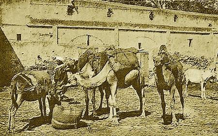Pierre LOTI : AU MAROC (1889) A_a_a_11