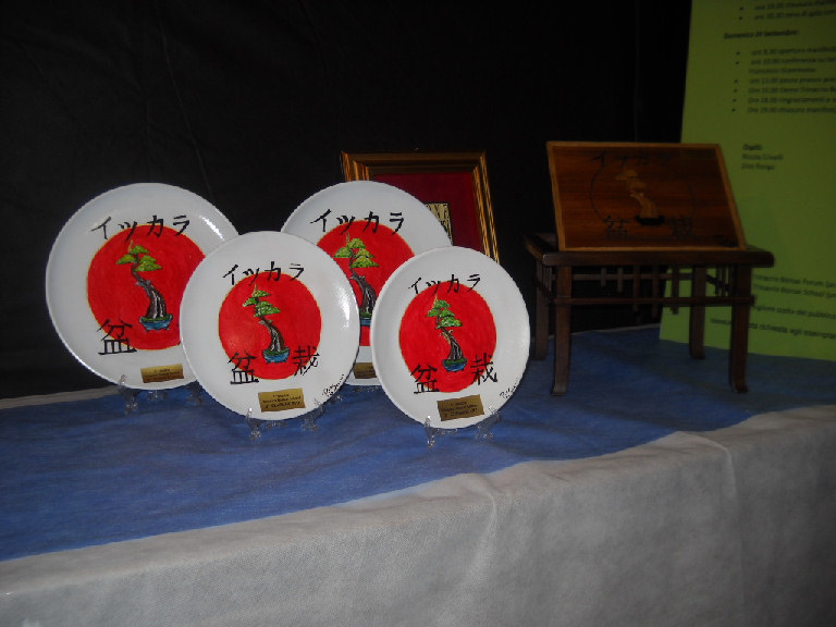 """1° Mostra Del neonato club """"Trinacria Bonsai School"""" Dscn2710"""