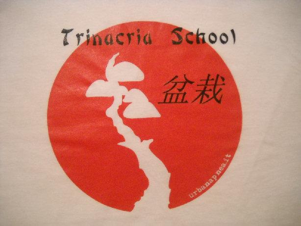 """1° Mostra Del neonato club """"Trinacria Bonsai School"""" Dscn2810"""