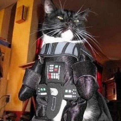 Star Wars Mice are Nice Star_w10