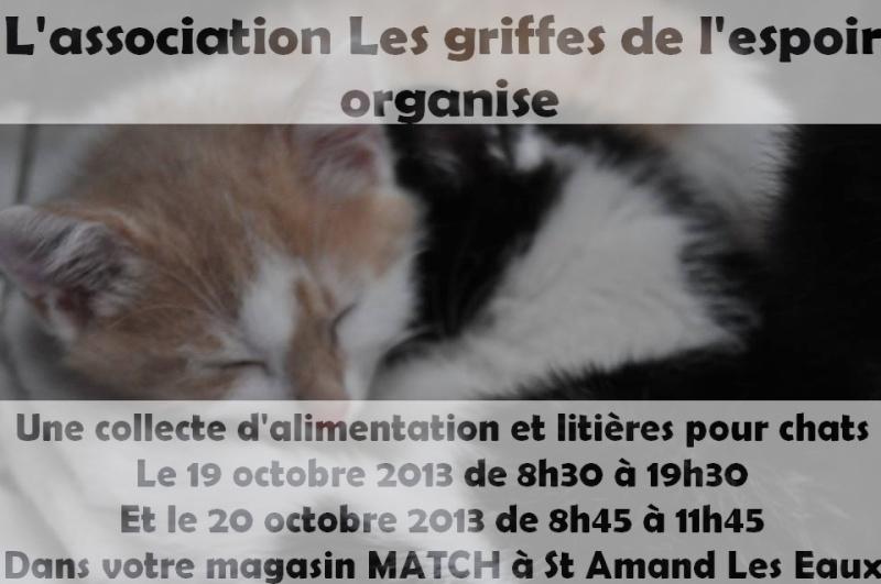 Collecte à MATCH St Amand Les Eaux 19 et 20 octobre 2013 Affich10