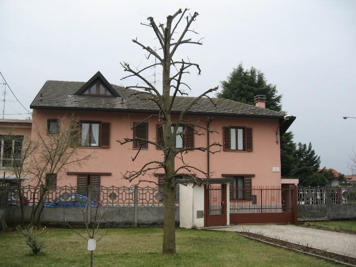 Piccolo tree climbing Img_9631