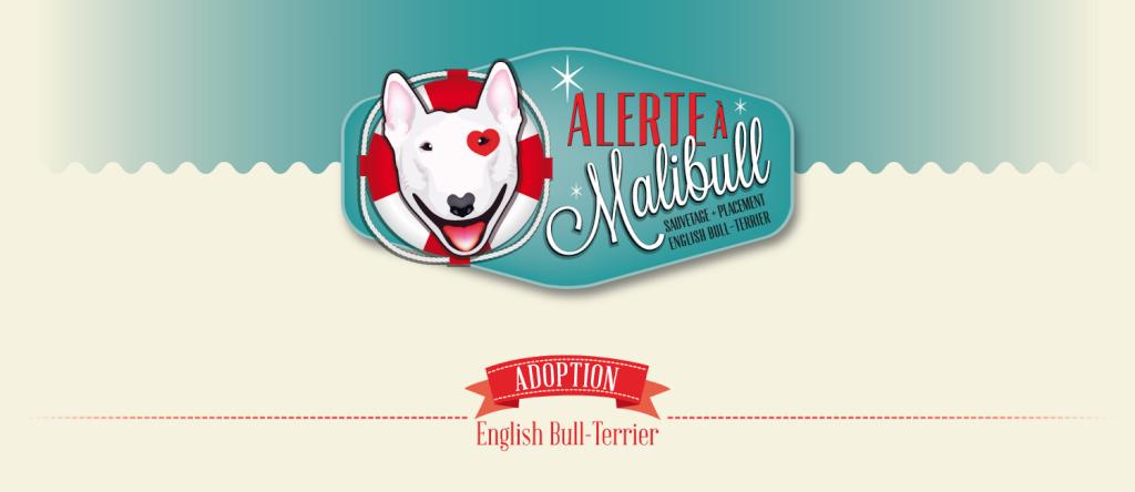 Association Alerte à Malibull