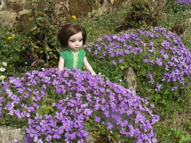 THEME DU MOIS DE MARS 2013 : le printemps, le renouveau, les balades dans la nature - Page 3 Sam_6212