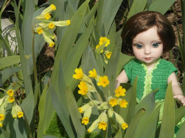 THEME DU MOIS DE MARS 2013 : le printemps, le renouveau, les balades dans la nature - Page 3 Sam_6215