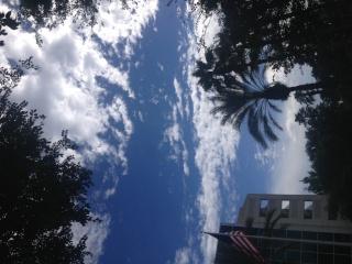 [TR] Floride Août 2013 - Page 3 Img_3220