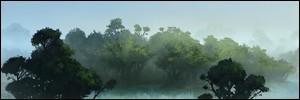 Description de la Jungle  Bois_210
