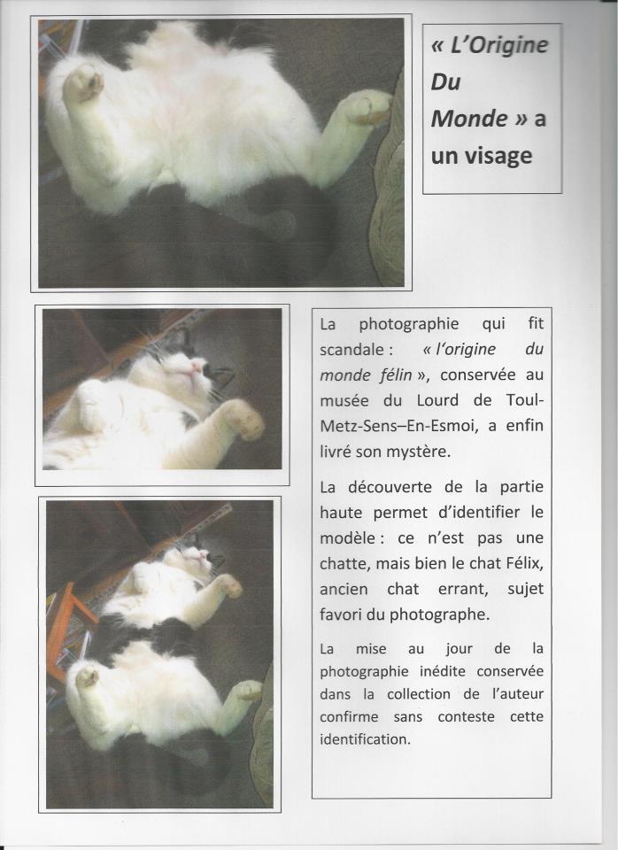 Humour (chapitre 2) - Page 14 Felix10