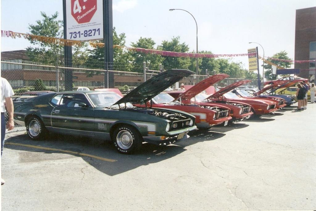 Montréal Mustang dans le temps! 1981 à aujourd'hui (Histoire en photos) - Page 6 1995-015