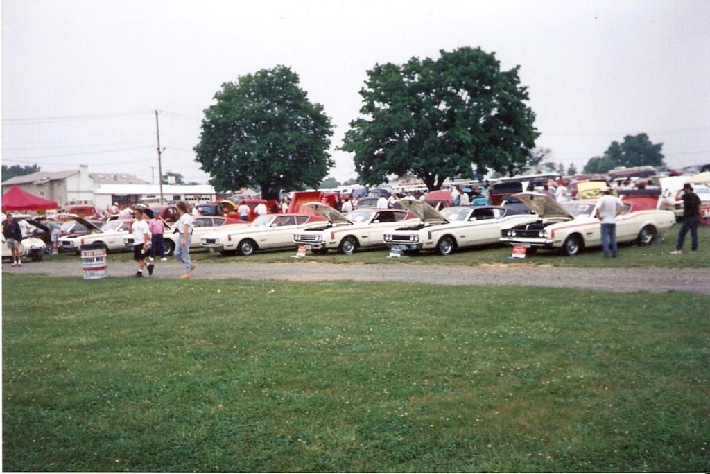 Montréal Mustang dans le temps! 1981 à aujourd'hui (Histoire en photos) - Page 6 1995-021