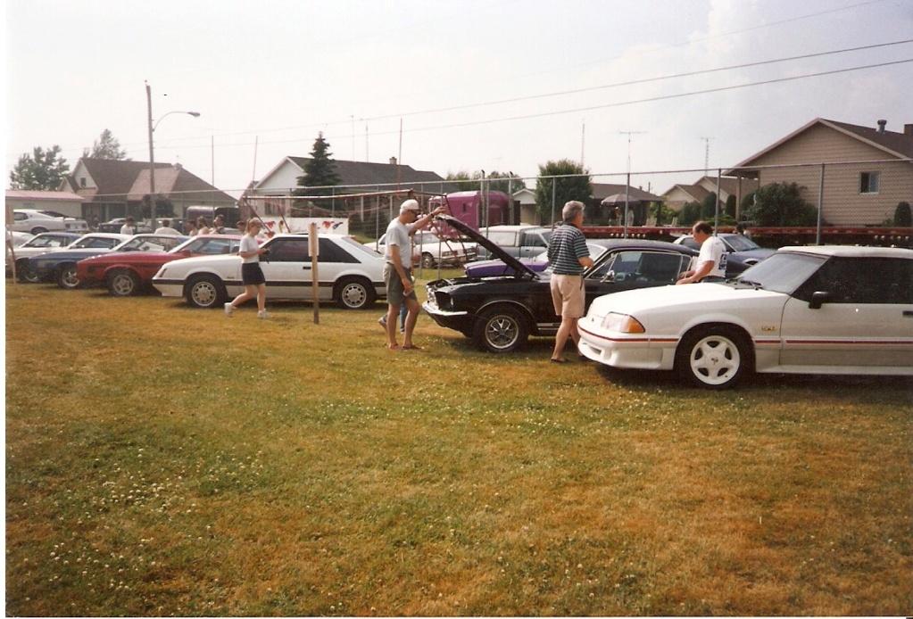 Montréal Mustang dans le temps! 1981 à aujourd'hui (Histoire en photos) - Page 6 1995-028