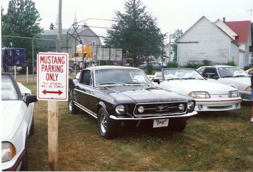 Montréal Mustang dans le temps! 1981 à aujourd'hui (Histoire en photos) - Page 6 1995-029