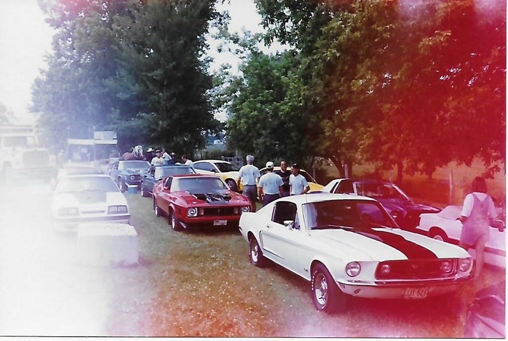 Montréal Mustang dans le temps! 1981 à aujourd'hui (Histoire en photos) - Page 6 1995-031