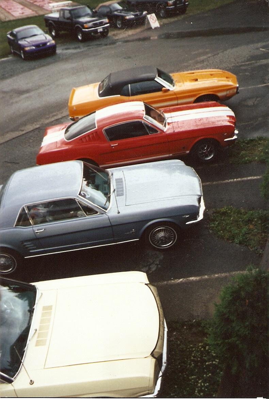 Montréal Mustang dans le temps! 1981 à aujourd'hui (Histoire en photos) - Page 6 1995-039