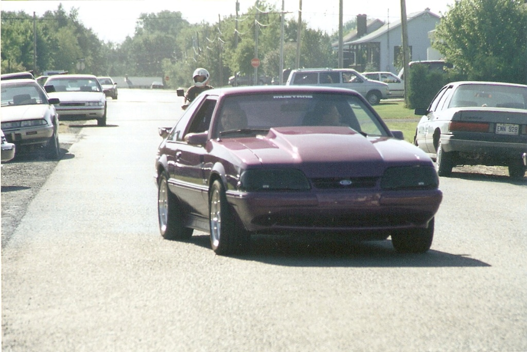 Montréal Mustang dans le temps! 1981 à aujourd'hui (Histoire en photos) - Page 6 1995-047