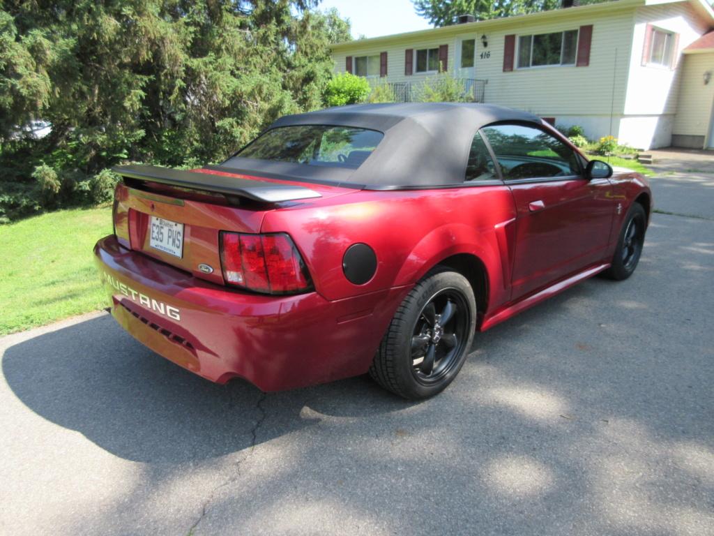 Mustang SN95  2019-034