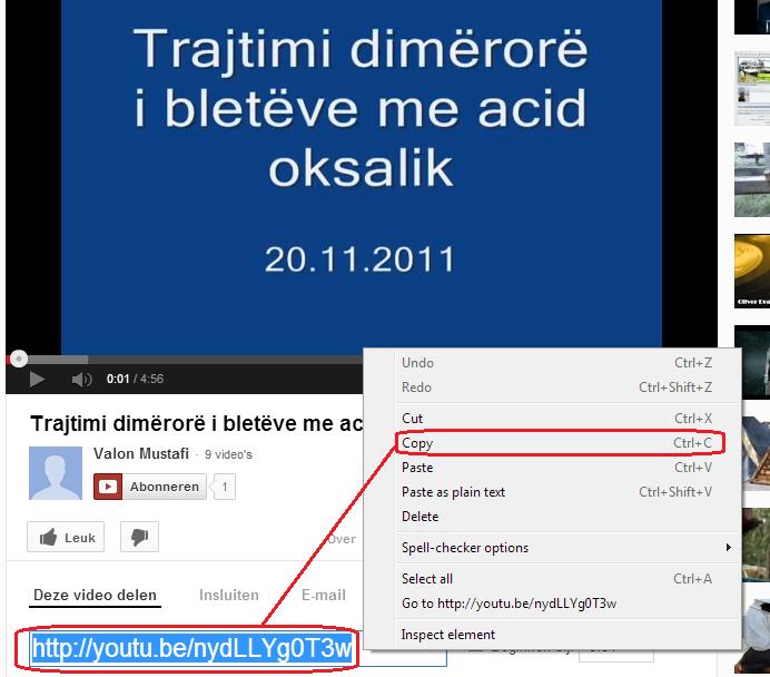 Vendosja e videove nga You Tube (inçizimeve) në forum  111