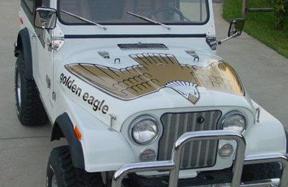 TATOOO Jeep_g10