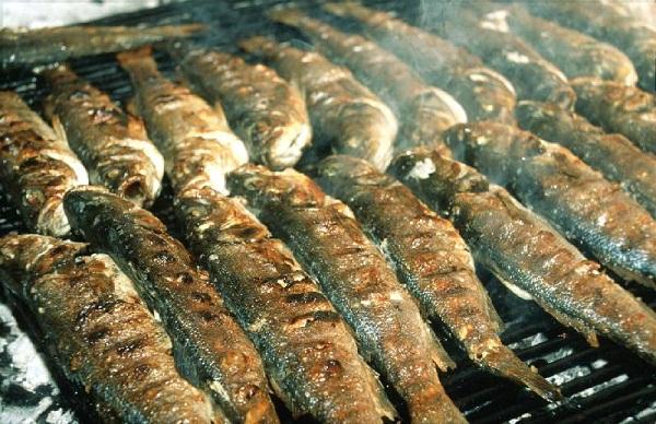 Bon Dimanche Fish-b10