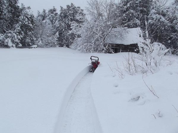 Bon Mardi Snow211