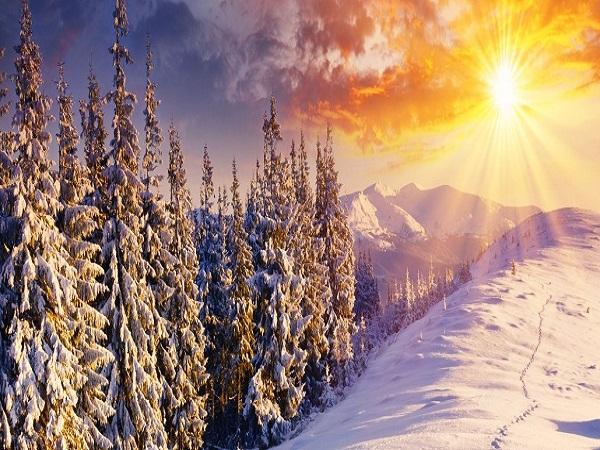 Bon Dimanche Snowy-10