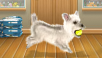Foopets transformation on fantage avater! Westie10