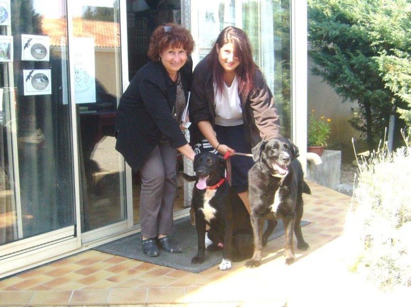 Wolf est en cours d'adoption !!!!!!!!!! Wolf adopté,puis avec son copain Doudou - Page 4 P1180510